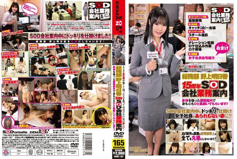 総務部 野上明日香 15周年SOD会社業務案内のパッケージ
